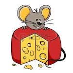 raton y queso aisladas sobre fondo blanco fotos retratos